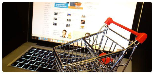 PrimeView AZ - 13 Elements of an E-commerce website